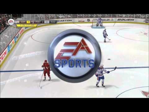 Intentional Goalie Interference - NHL 14
