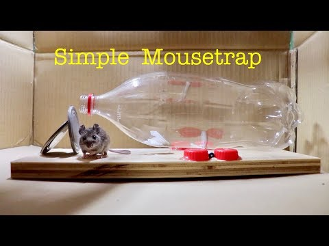 Make a ● Simple Bottle Mousetrap ( that works ! )