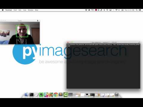 Detecting faces in a webcam video stream using Python and OpenCV