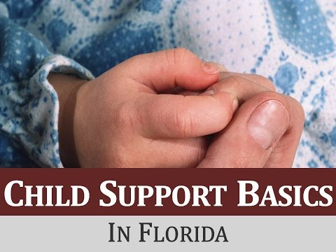 Child Support Basics in Florida