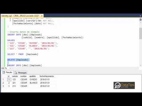 DataTips - Reset Identity Column