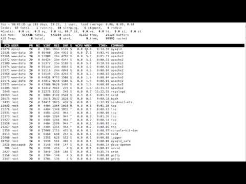 Sorting the Top command according to the Memory utilisation ( Ubuntu, Linux, Debian )