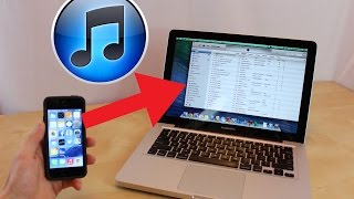 How To Transfer Songs From Iphone To Computer Itunes Copy Music Mac T