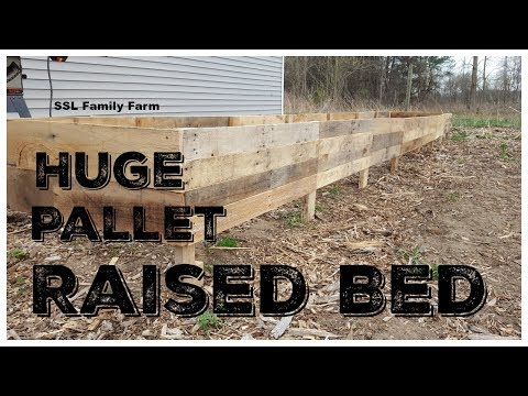 22 Foot Long Raised Bed Garden Made From Pallets! - Total cost = 99 cents