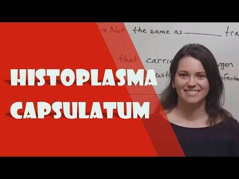 Histoplasma capsulatum Infection