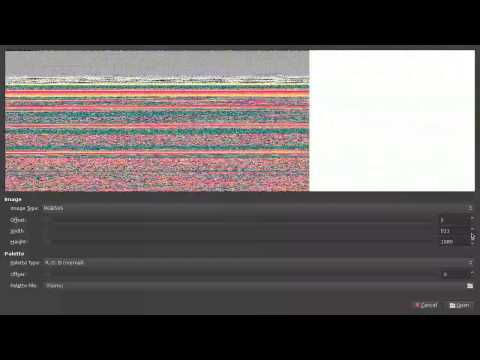 GIMP Raw File Import Demo