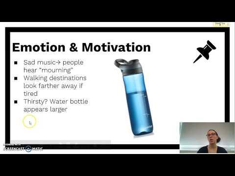Module 17: Influences on Perception
