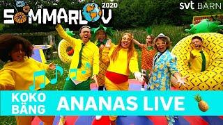 Koko Bäng - Ananas Live i Sommarlov 2020