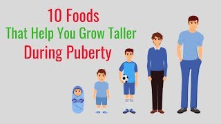 10 Foods That Help You Grow Taller During Puberty
