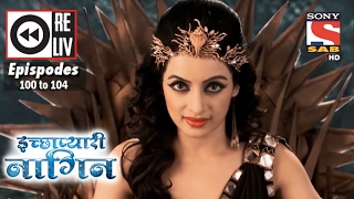 Weekly Reliv | Icchapyaari Naagin | 13th Feb to 17th Feb 2017 | Episode 100 to 104