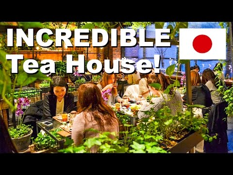 Incredible Japanese Tea House!