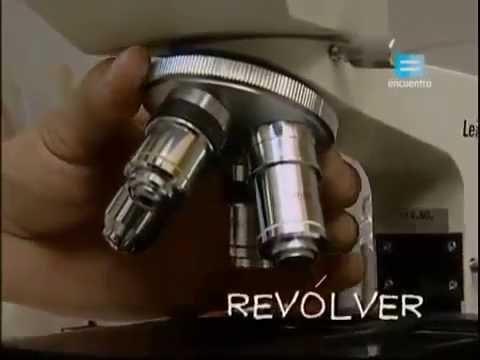 Viaje al centro del microscopio  (extracto)- INTRODUCCIÓN A LA CÉLULA
