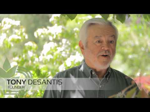 Landscaping Portland, Salem Oregon: Creativity
