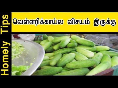 வெள்ளரிக்காய்ல விசயம் இருக்கு ! cucumber fruits benefit in tamil | Homely tips
