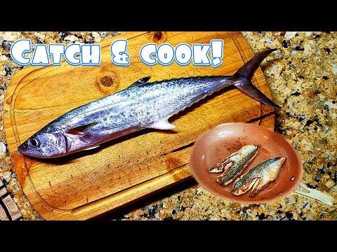 OCEAN Catch And Cook!! Spanish Mackerel!