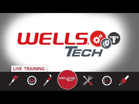 LIVE - Q & A - Hangin' Out With The Wells Tech Guys - What's New For 2018!