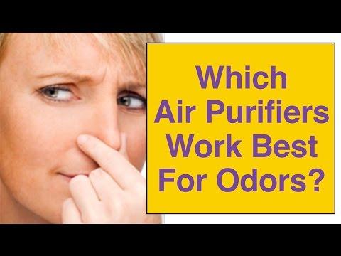 Best Odor Air Purifier