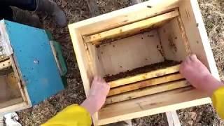 Зимовка пчел в деревянных ульях на сетчятом дне 3