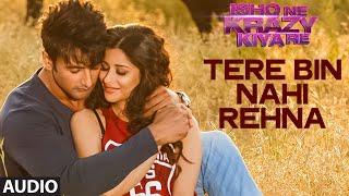 Tere Bin Nahi Rehna Full AUDIO Song | Ishq Ne Krazy Kiya Re | T-Series
