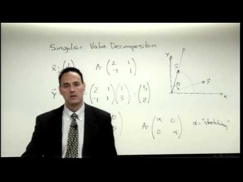 Lecture: The Singular Value Decomposition (SVD)