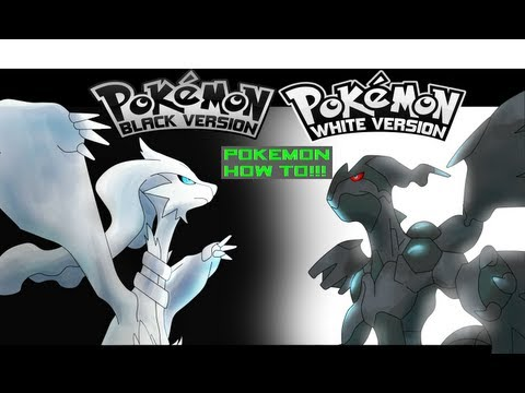 Pokemon Black & White - How To Get TM:70 Flash