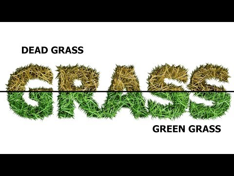 Grass Text Effect - Speed Art (GIMP)