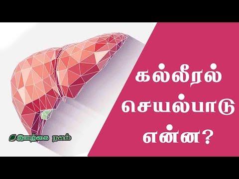 கல்லீரல் செயல்பாடு என்ன? | Liver Function in Tamil | Kalleeral in Tamil