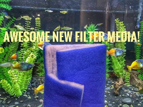 Awesome New Filter Media! (Blue Maxx)