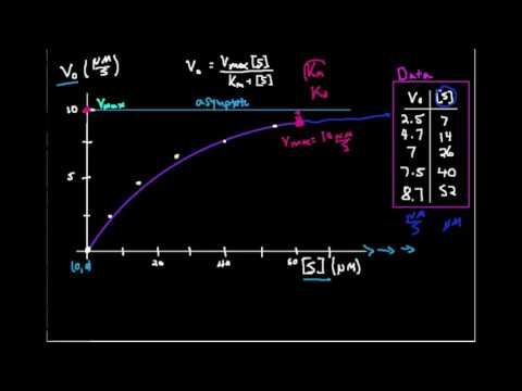 Michaelis-Menten Plot: Estimating Km