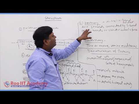 Biomolecules Chemistry Part-5 std 12th HSC Board Video Lecture BY Rao IIT Academy