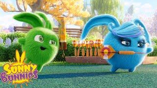 SUNNY BUNNIES - Darts Prank   Season 2   Cartoons for Children