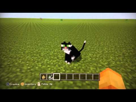 Minecraft Xbox 360 Edition: How to Tame an Ocelot