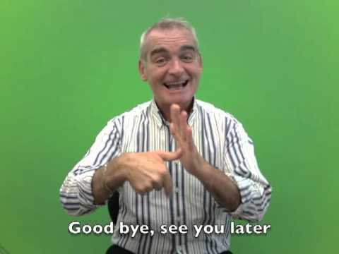 Irish Sign Language for 'Good bye, see you later.'