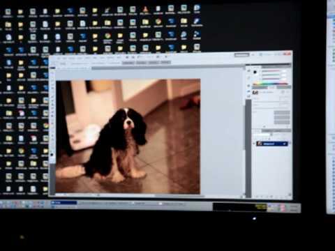Photoshop CS5 icon test