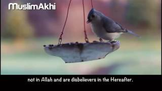 Surah Yusuf - Mufti Menk - [with Eng Translation]