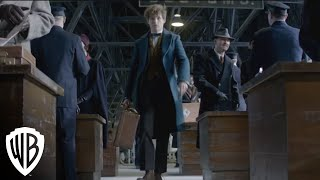 Fantastic Beasts and Where to Find Them VR Experience :15 Trailer