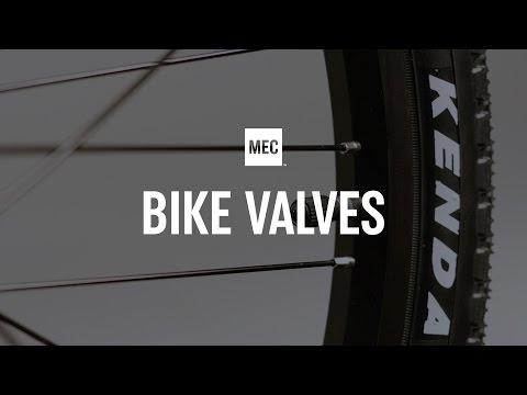 Types of Bike Valves