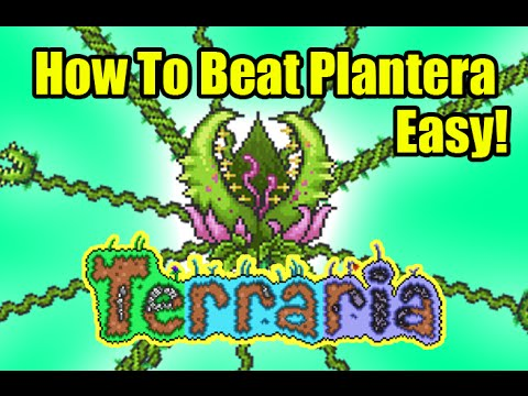 Terraria How To Beat Plantera Easily | Defeat Plantera Easy