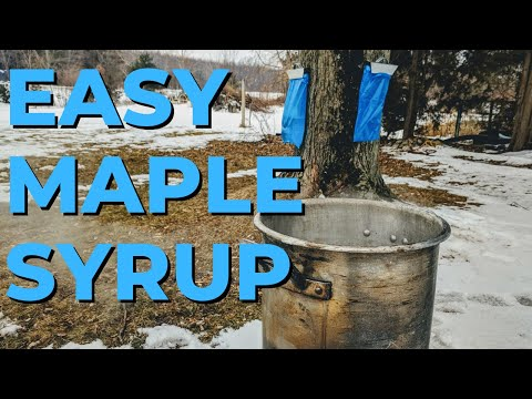 How to Make the Best Backyard Maple Syrup Using a Turkey Fryer as an Evaporator