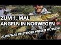 Norwegen Angeln für Einsteiger - so gehts!  Hecht, Barsch und co