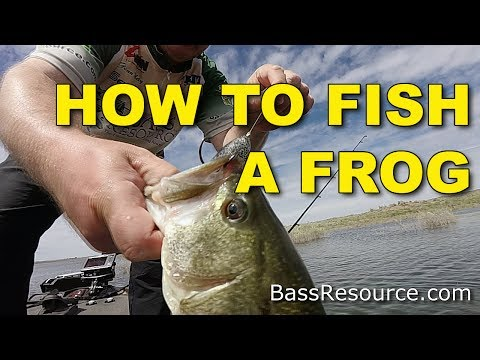 How To Fish A Frog For Big Fish (The Best Ways) | Bass Fishing
