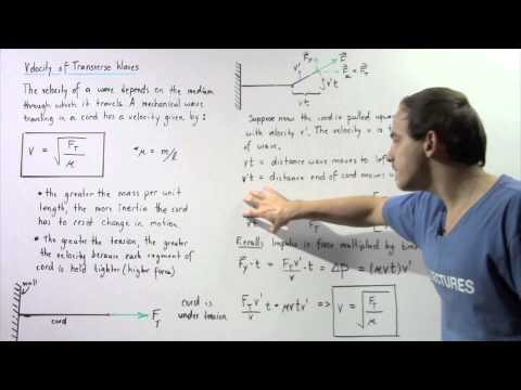 Velocity of Transverse Wave in Cord