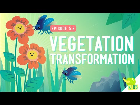 Vegetation Transformation: Crash Course Kids #5.2