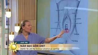 Smärta vid samlag allt vanligare - Nyhetsmorgon (TV4)