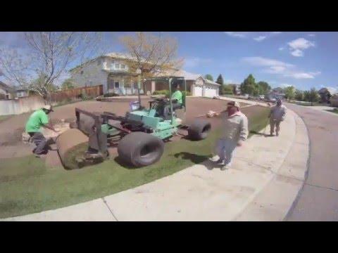 Staten Island Sod Installation - Servicing Brooklyn & New Jersey