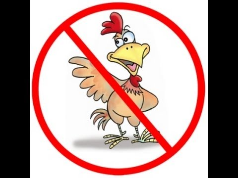 The Truth About Michigan Ban on Raising Chickens