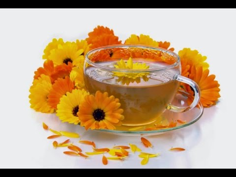 How to make Calendula Herbal Tea and Herbal Oil infusions