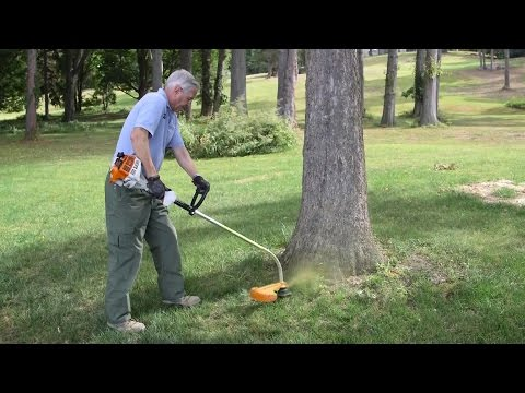 String Trimmer Buying Guide | Consumer Reports