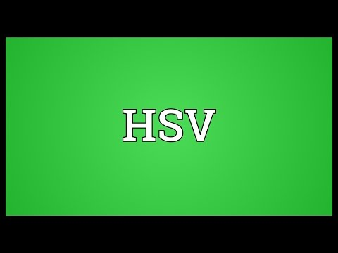 HSV Meaning