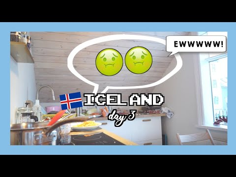Travel Vlog - Winter in Iceland 🇮🇸 (ep.3/6)
